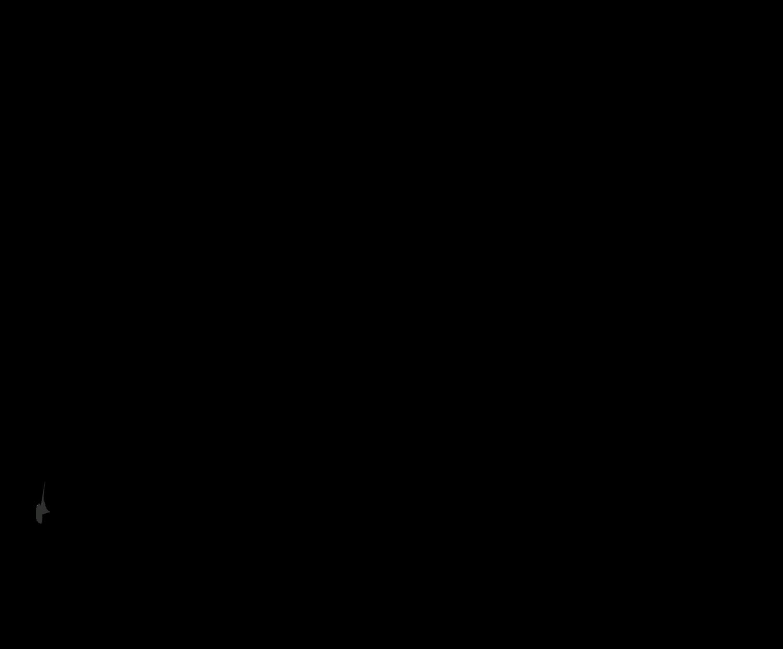 Fell Brewery logo